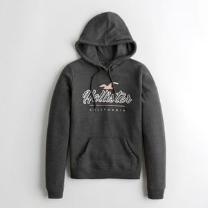 Nwt Womens Hollister Gray Pullover Logo  Hoodie
